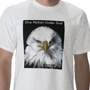 American_eagle_tshirt-p235447350164030036tdq8_380